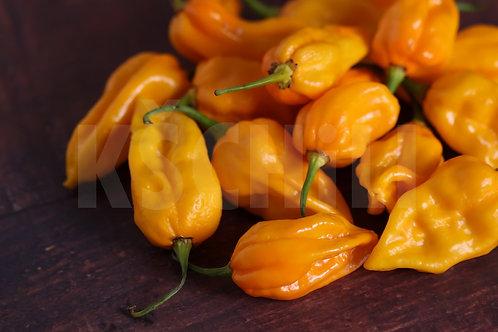 """""""Bhut Jolokia Yellow"""" Hot Chili Pepper 8 Seeds (Capsicum Chinense)"""