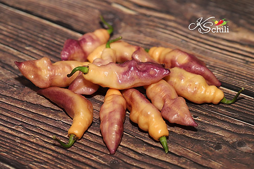"""Pink Tiger"" Pepper 8 Seeds (Capsicum Chinense)"