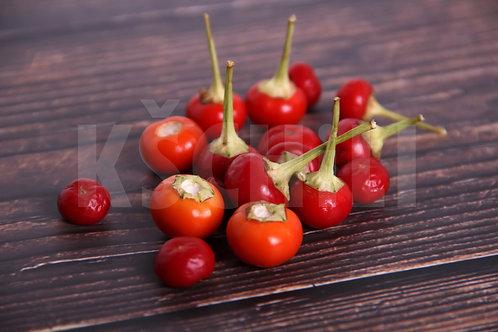 """""""Marbles"""" Pepper 8 Seeds (Capsicum Annuum)"""