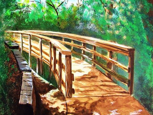 11x17 Landscape of Bayou Bend 2