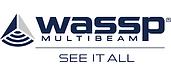 WASSP 2021.png
