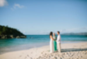 elope to the caribbean.jpg
