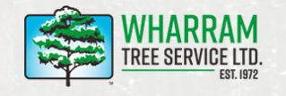 Wharram tree.jpg