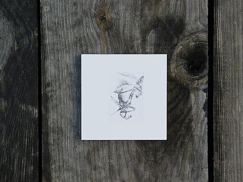 KOŃ (b) GŁOWA - płytka ceramiczna 9,7 x 9,7 cm