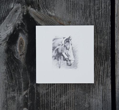 KOŃ (a) GŁOWA - płytka ceramiczna 9,7 x 9,7 cm