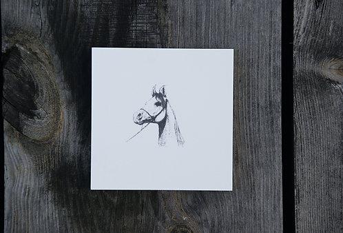 KOŃ (c) GŁOWA - płytka ceramiczna 9,7 x 9,7 cm