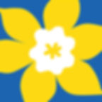 ccs-logo-01.jpg