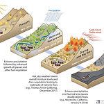 Wildfire soil erosion.jpg
