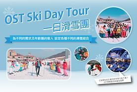 ski工作區域 20_216x.png
