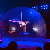 Pole Dance Show.jpg