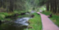 River walk concept 2.jpg