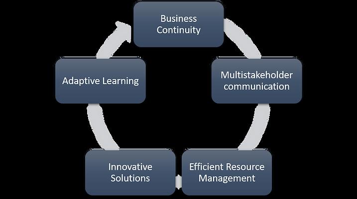 holisting crisis management.png