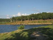 Keystone_State_Park,_OK_(3824744372).jpg