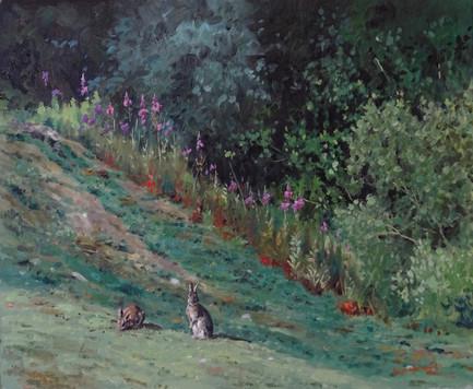 Rabbits and Willowherb