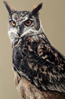 Warwickshire Eagle Owl