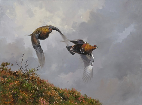 Grouse at Speed