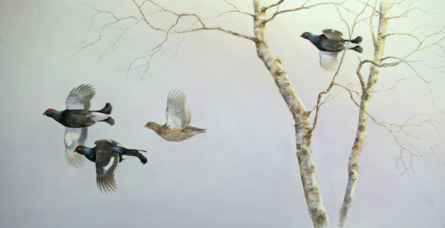 Blackgame and Birches