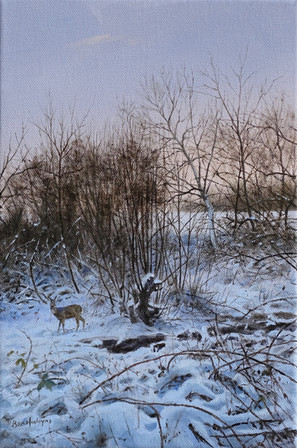 Winter Roe
