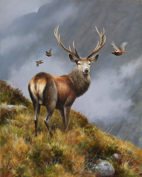 Stag & Grouse