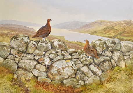 Grouse Wall