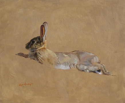 Resting Rabbit Sketch