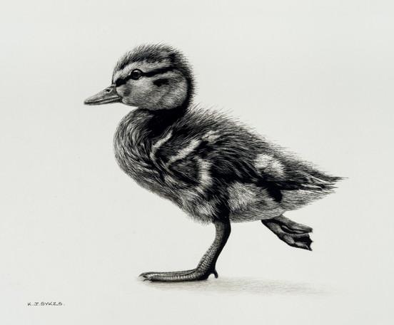 Running Duckling
