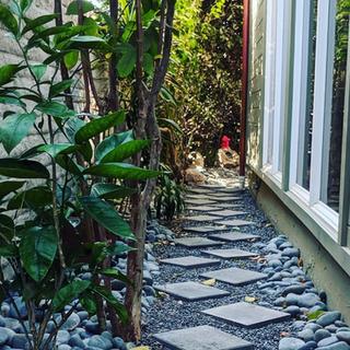 Garden 10.png