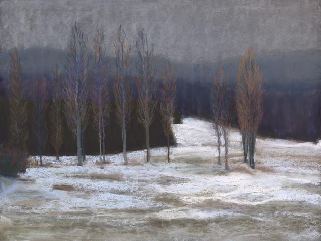 Arboretum in Winter