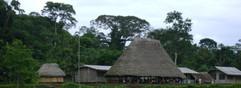 1 Village in Site (2).JPG