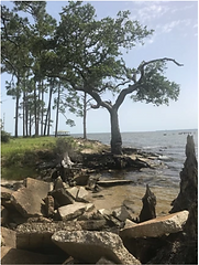 RV Park Development Land Escambia Bay, Florida