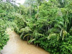 16  River Ishkay.JPG