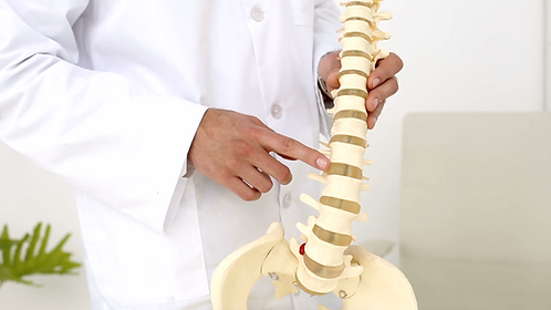 Booth Space For Chiropractor - June Rapids