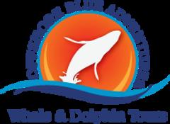 offshore-blue-adventures-logo.png