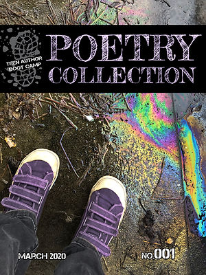 001 TABC poetry cover logo.jpg
