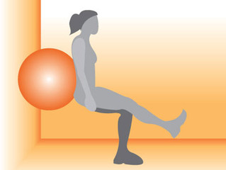 Unilateral Exercise: Single Leg Stability Ball Wall Squat