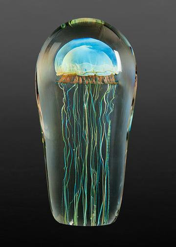 Satava Moon Jellyfish