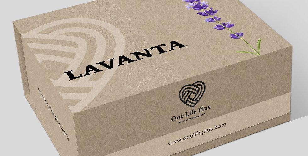 Lavanta Paketi 0035