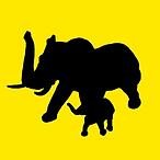 Elefantbau Alanya İmmobilien Kaufen Ferien Machen İnvestieren