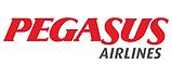 Pegasus Hava Yolları Hakkındaki Tüketici Şikayetleri