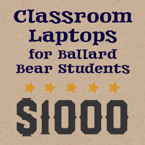 Virtual Paddle Raise - Classroom Laptops