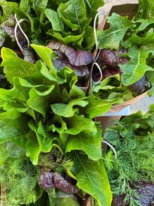 CSA Veggie Share