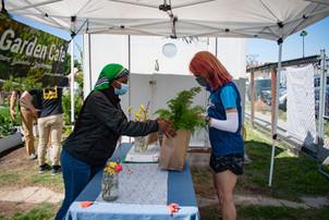 Veggie Share CSA
