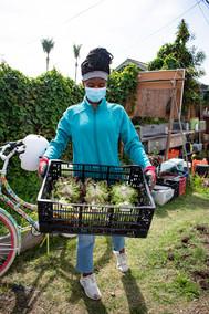 Youth FarmWorks