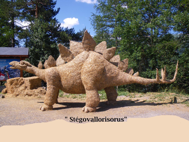 Stegovalorisorus