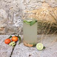 Eau infusée citron vert kiwi & menthe