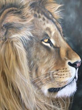 nicola colbran lion.jpg