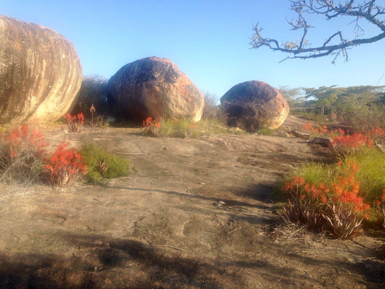 Rocks on Path-min