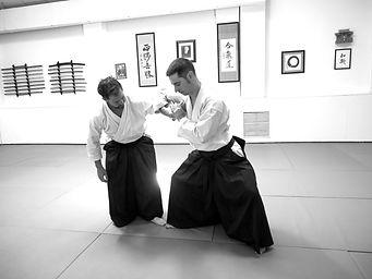 Clases privadas Aikido en Escuela de Artes Marciales Dojo Zentrum (Madrid)