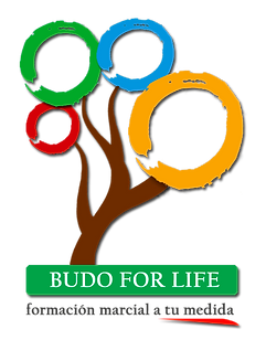Budo for Life - Clases privadas Artes Marciales y Defensa Personal en Dojo Zentrum (Madrid)