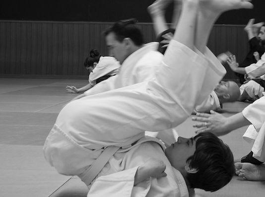 190427-Aikido_Josh_Gold-PatSotomayor-058